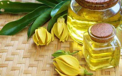 Featured Essential Oil: Ylang Ylang