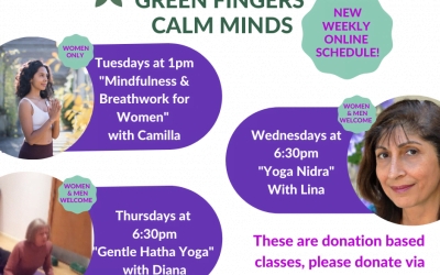 NEW – LIVE ONLINE WEEKLY CLASSES